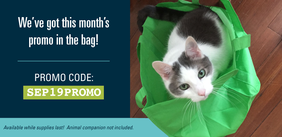 Free tote with your purchase! Promo Code: SEP19PROMO